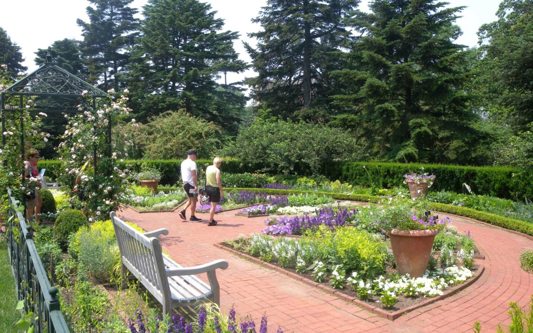 Summer Ideas for Landscaping and Gardening
