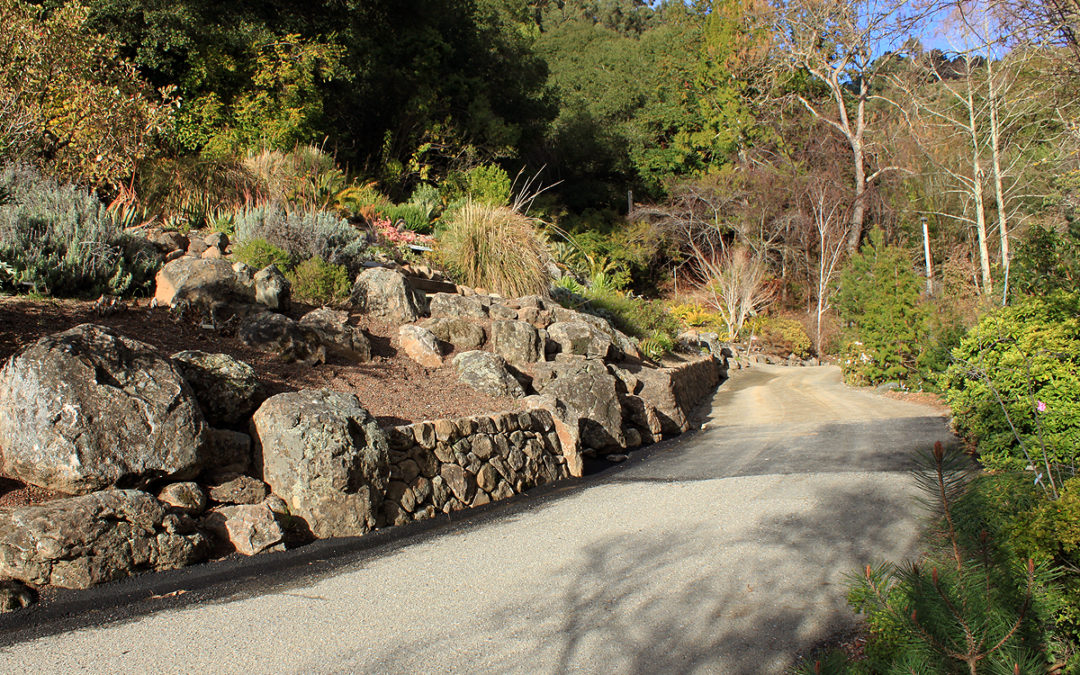 How To Use Boulders In Landscapes Portland Rock And Landscape Supply